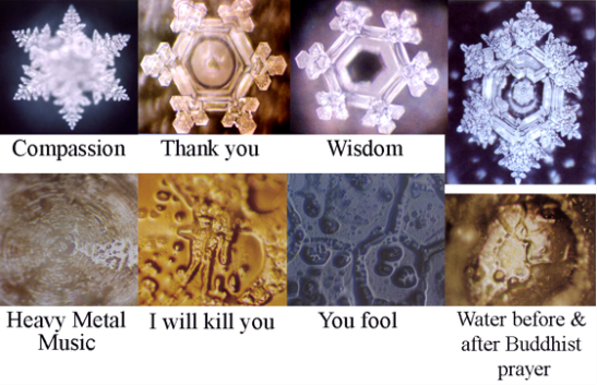 cristaux masaru emoto