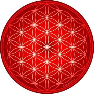 Flower Of Life Energising Plate