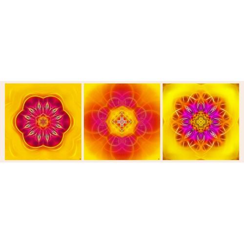 Mandala Triptych n°3