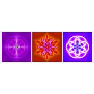 Mandala Triptych n°4