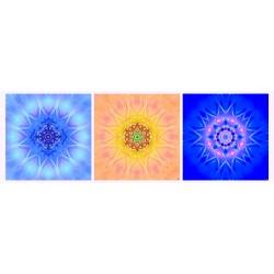 Mandala Triptych n°5
