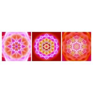 Mandala Triptych n°8