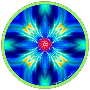Harmonizing platter Mandala of Digestion