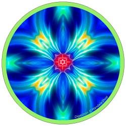 Disque harmonisant Mandala de la Digestion