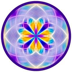 Harmonizing platter Mandala of Solidarity
