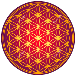 Harmonising disk Antique Flower of Life