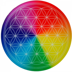 Round Energising Plate Flower of Life 7 rays