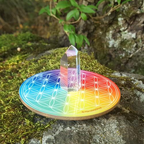Harmonising disk Flower of Life 7 rays