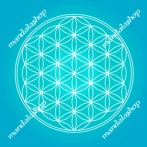 Turquoise Flower of Life canvas