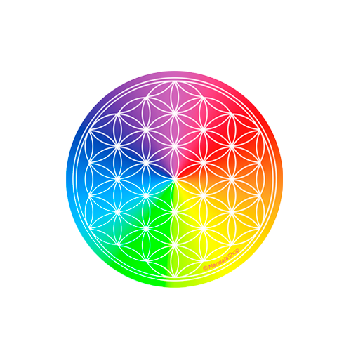 Round magnet 7 ray Flower of Life