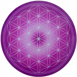 Round Energising Plate Purple Flower of Life