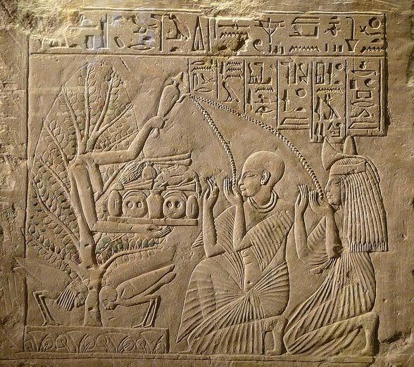 Arbre ka-ba Egypte